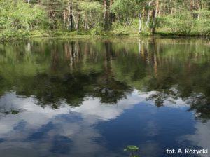 Poland National Parks