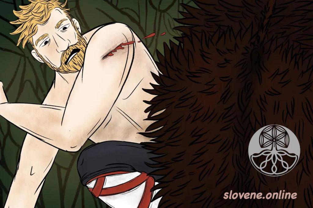 boar scar