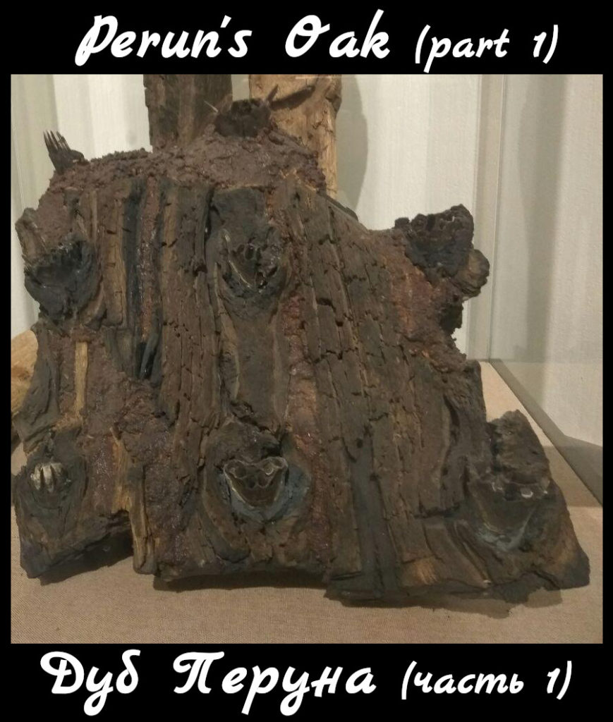 Perun oak
